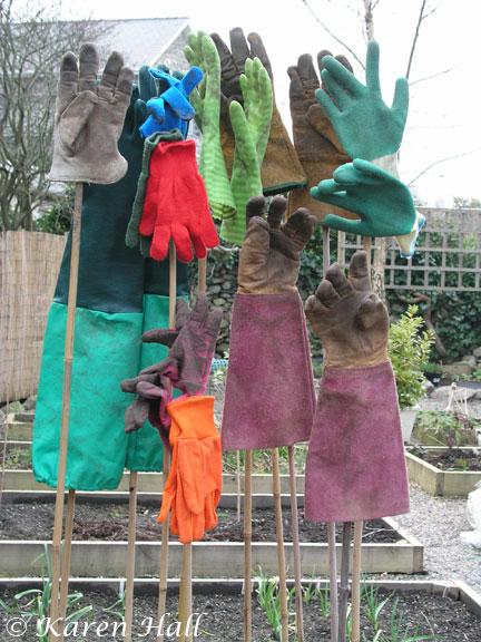 My Glove Garden